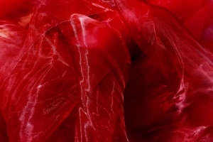 Organza rouge bordeaux